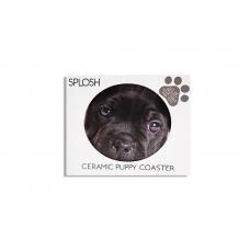 Splosh Coaster Dog Buddy
