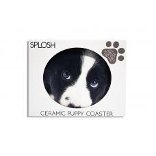 Splosh Coaster Dog Lucy
